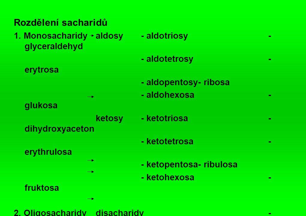 Rozdělení sacharidů 1.