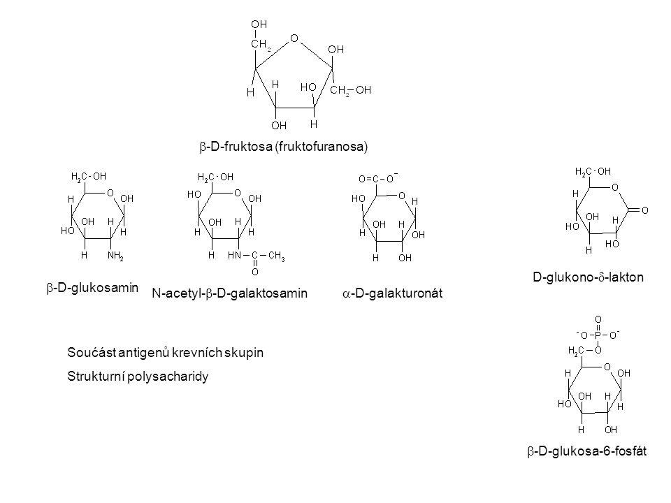  -D-fruktosa (fruktofuranosa)  -D-glukosamin N-acetyl-  -D-galaktosamin  -D-galakturonát D-glukono-  -lakton  -D-glukosa-6-fosfát Soućást antige