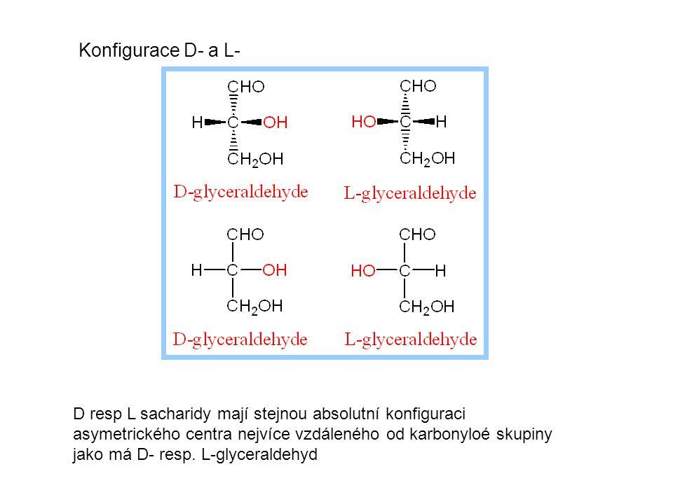 Glukoneogenese - tvorba glukosy spotřeba:160±20/den 75% mozek V krvi ≈ 20 g Zásoba glykogenu = 180 – 200 g glc