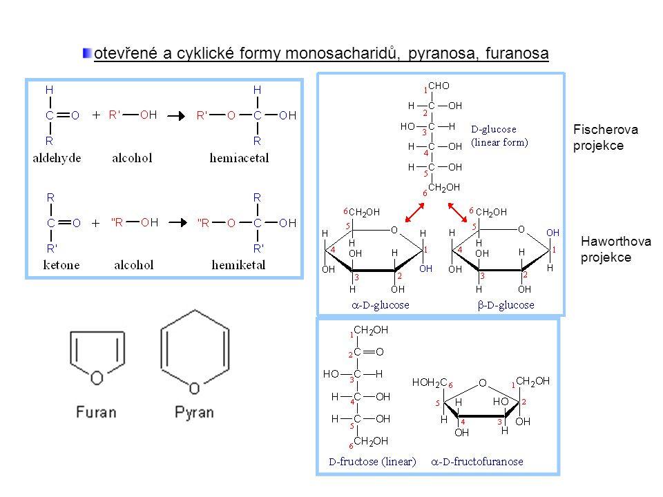 otevřené a cyklické formy monosacharidů, pyranosa, furanosa Fischerova projekce Haworthova projekce