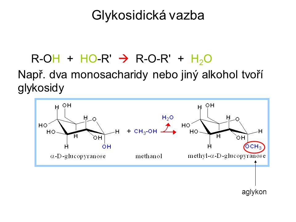 Glykosidická vazba R-OH + HO-R'  R-O-R' + H 2 O Např. dva monosacharidy nebo jiný alkohol tvoří glykosidy aglykon