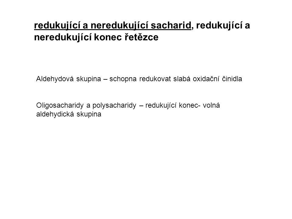 Monosacharidy  -D-glukosa necyklická forma glukosy  -D-glukosa  -D -galaktosa (galaktopyranosa)  -D-mannosa (mannopyranosa)