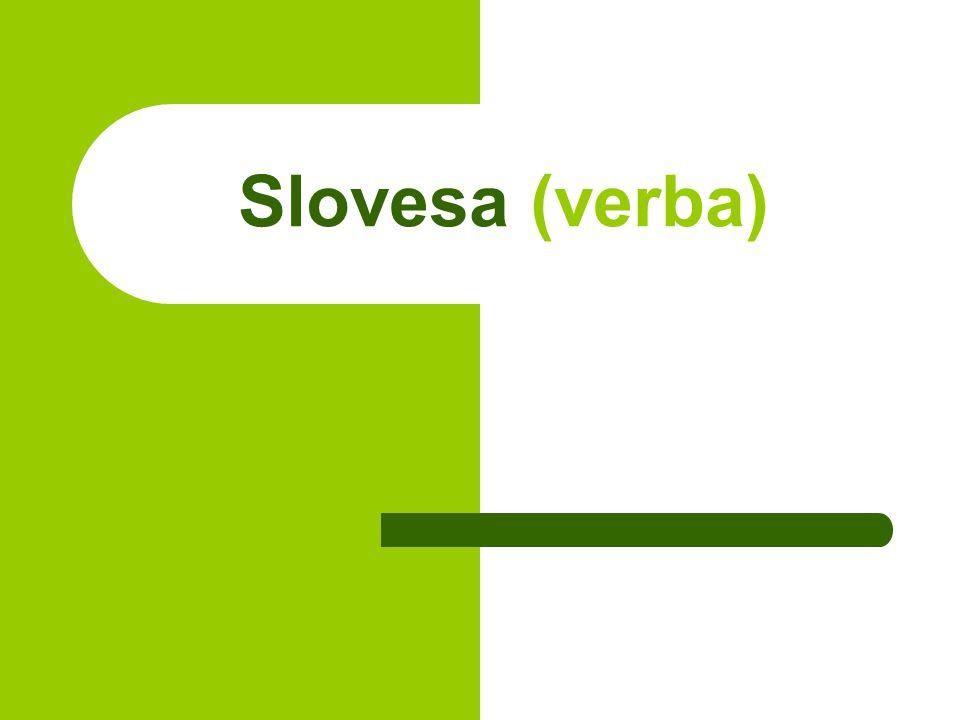 Slovesa (verba)