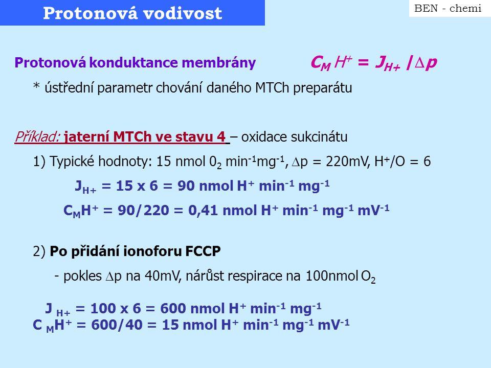 Protonová vodivost BEN - chemi Protonová konduktance membrány C M H + = J H+ /  p * ústřední parametr chování daného MTCh preparátu Příklad: jaterní