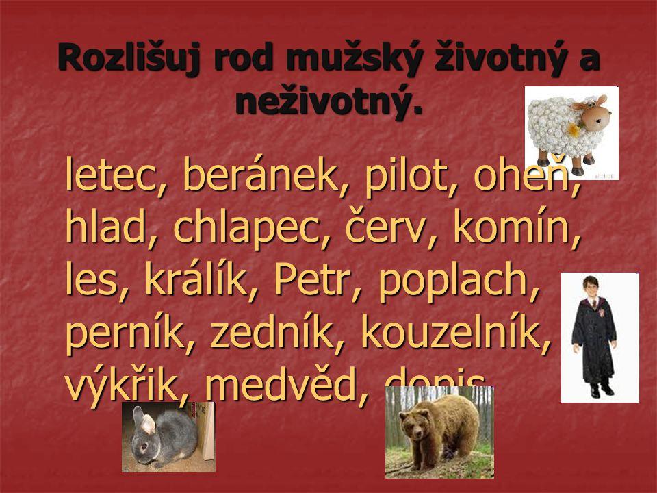 Rozlišuj rod mužský životný a neživotný. letec, beránek, pilot, oheň, hlad, chlapec, červ, komín, les, králík, Petr, poplach, perník, zedník, kouzelní