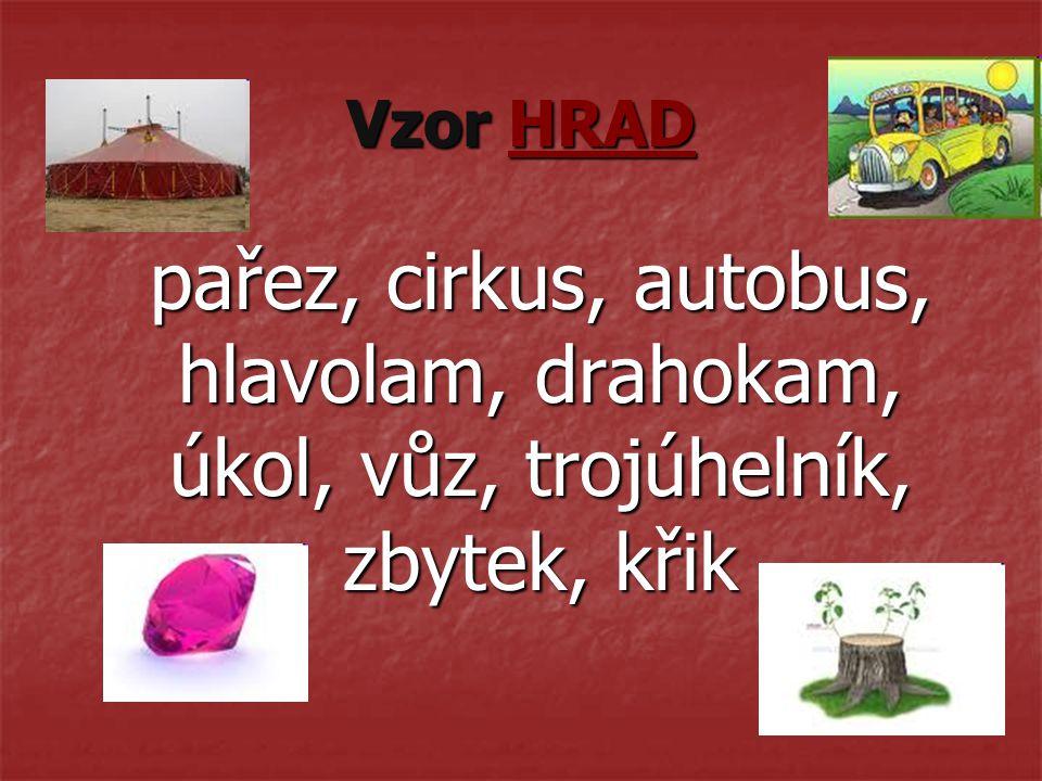 Vzor HRAD pařez, cirkus, autobus, hlavolam, drahokam, úkol, vůz, trojúhelník, zbytek, křik