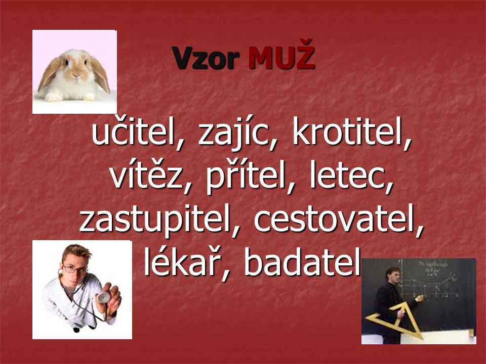 Vzor MUŽ učitel, zajíc, krotitel, vítěz, přítel, letec, zastupitel, cestovatel, lékař, badatel