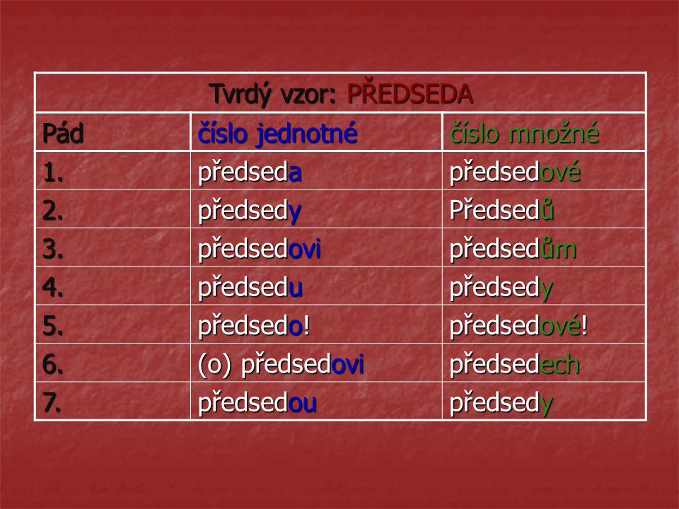 Tvrdý vzor: PŘEDSEDA Pád číslo jednotné číslo množné 1. předseda předsedové 2. předsedy Předsedů 3. předsedovi předsedům 4. předsedu předsedy 5. předs