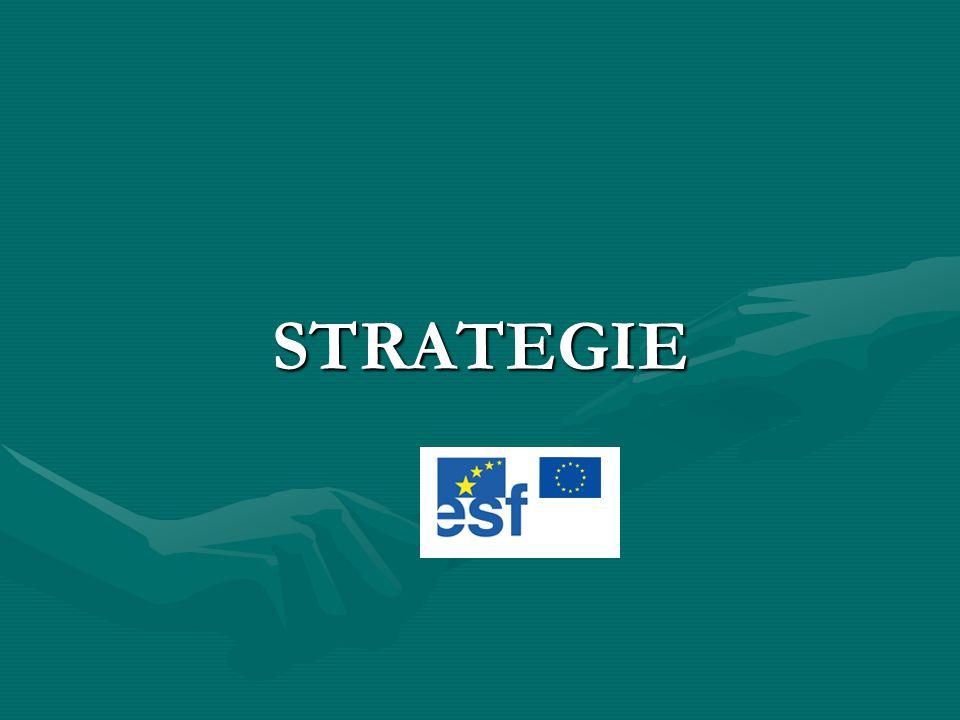 Základní dokument Spolupráce mezi žadatelem a partnery bude založena na Smlouvě o partnerství a vzájemné spolupráci, která bude specifikovat roli a odpovědnost partnerů v rámci projektu a stanoví pravidla interní kontroly a auditu.