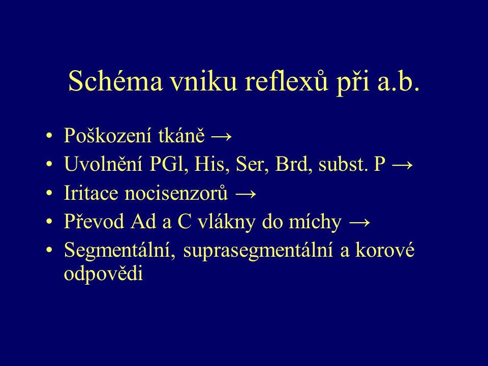 Analgetika Neopioidní analgetika –Analgetika – antipyretika (ASA) Paracetamol Pyrazolony (metamizol, propyfenazon) –Nesteroidní antirevmatika (NSA) GIT riziková (neselektivní a preferenční) GIT šetrná – koxiby (specifické COX-2 inhibitory) Opioidní analgetika –Slabé opioidy –Silné opioidy