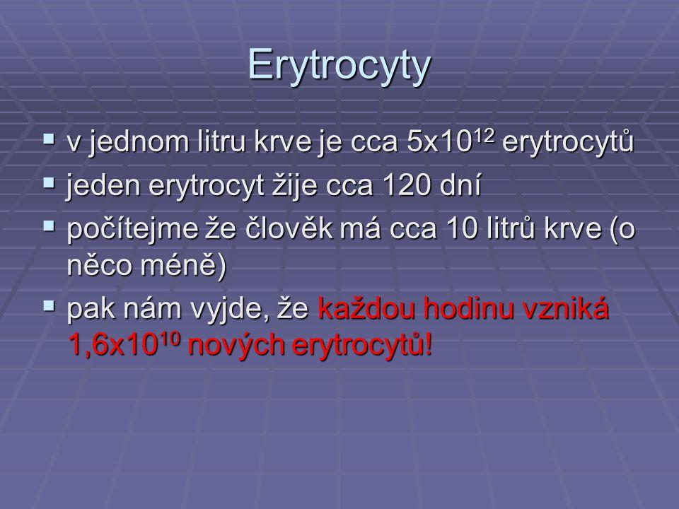 Erytrocyty  v jednom litru krve je cca 5x10 12 erytrocytů  jeden erytrocyt žije cca 120 dní  počítejme že člověk má cca 10 litrů krve (o něco méně)