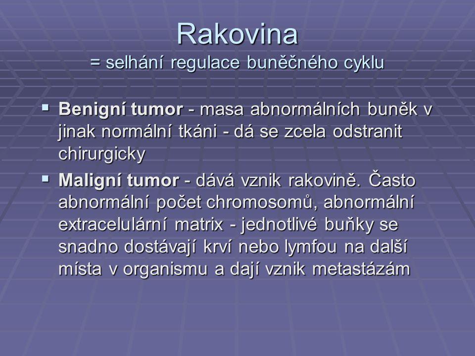 Rakovina = selhání regulace buněčného cyklu  Benigní tumor - masa abnormálních buněk v jinak normální tkáni - dá se zcela odstranit chirurgicky  Mal