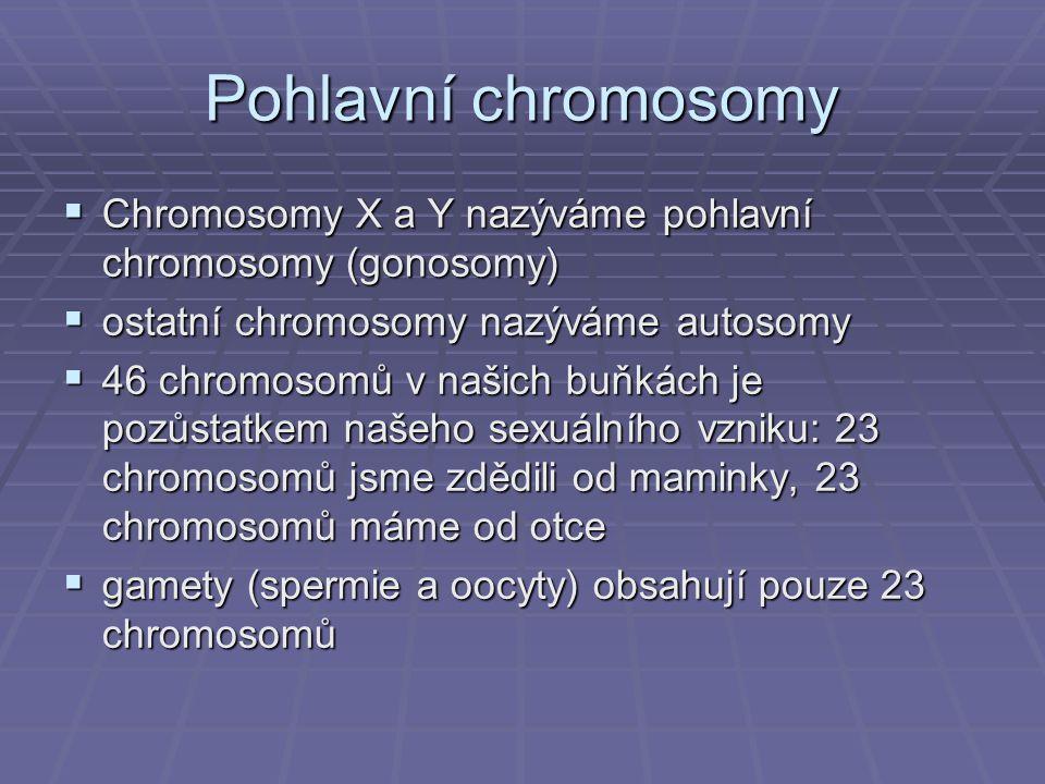 Pohlavní chromosomy  Chromosomy X a Y nazýváme pohlavní chromosomy (gonosomy)  ostatní chromosomy nazýváme autosomy  46 chromosomů v našich buňkách