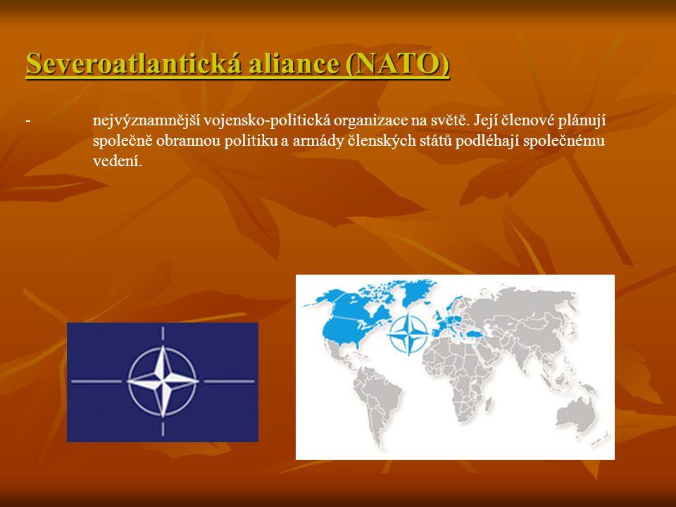 Severoatlantická aliance (NATO) -nejvýznamnější vojensko-politická organizace na světě. Její členové plánují společně obrannou politiku a armády člens
