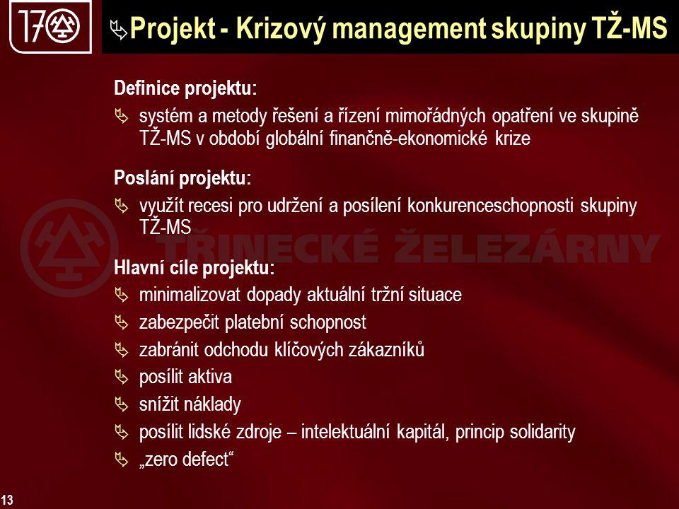 13  Projekt - Krizový management skupiny TŽ-MS Definice projektu:  systém a metody řešení a řízení mimořádných opatření ve skupině TŽ-MS v období gl
