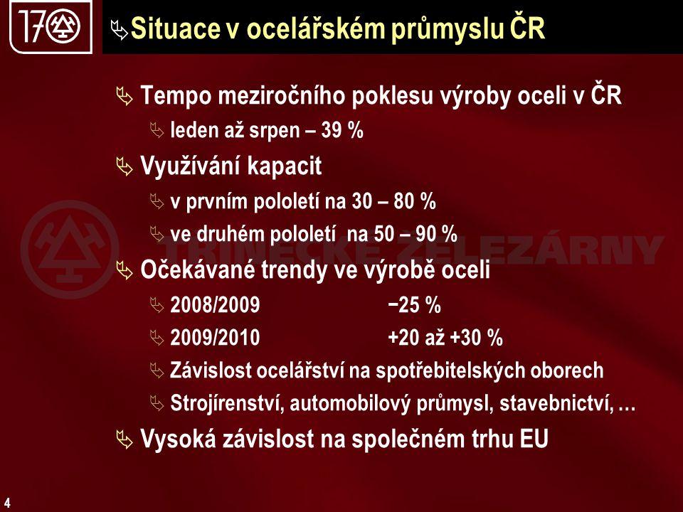 4  Situace v ocelářském průmyslu ČR  Tempo meziročního poklesu výroby oceli v ČR  leden až srpen – 39 %  Využívání kapacit  v prvním pololetí na