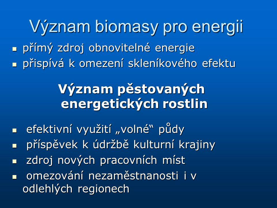 Význam biomasy pro energii přímý zdroj obnovitelné energie přímý zdroj obnovitelné energie přispívá k omezení skleníkového efektu přispívá k omezení s