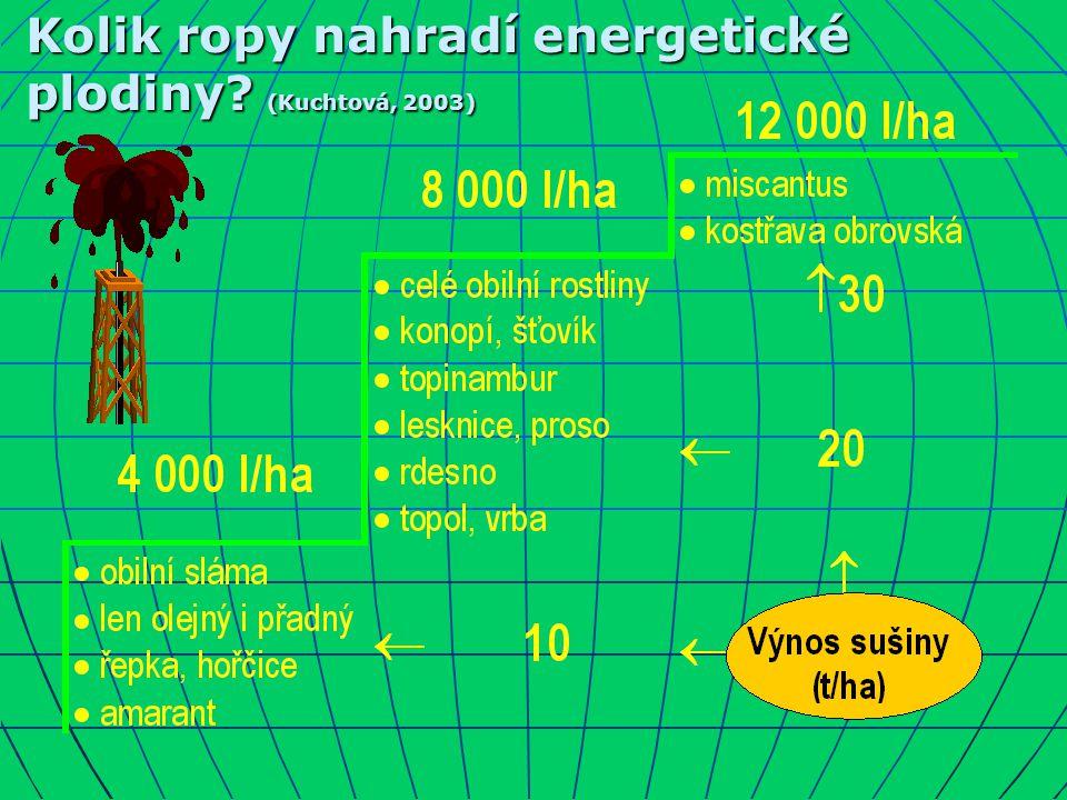 Kolik ropy nahradí energetické plodiny? (Kuchtová, 2003)