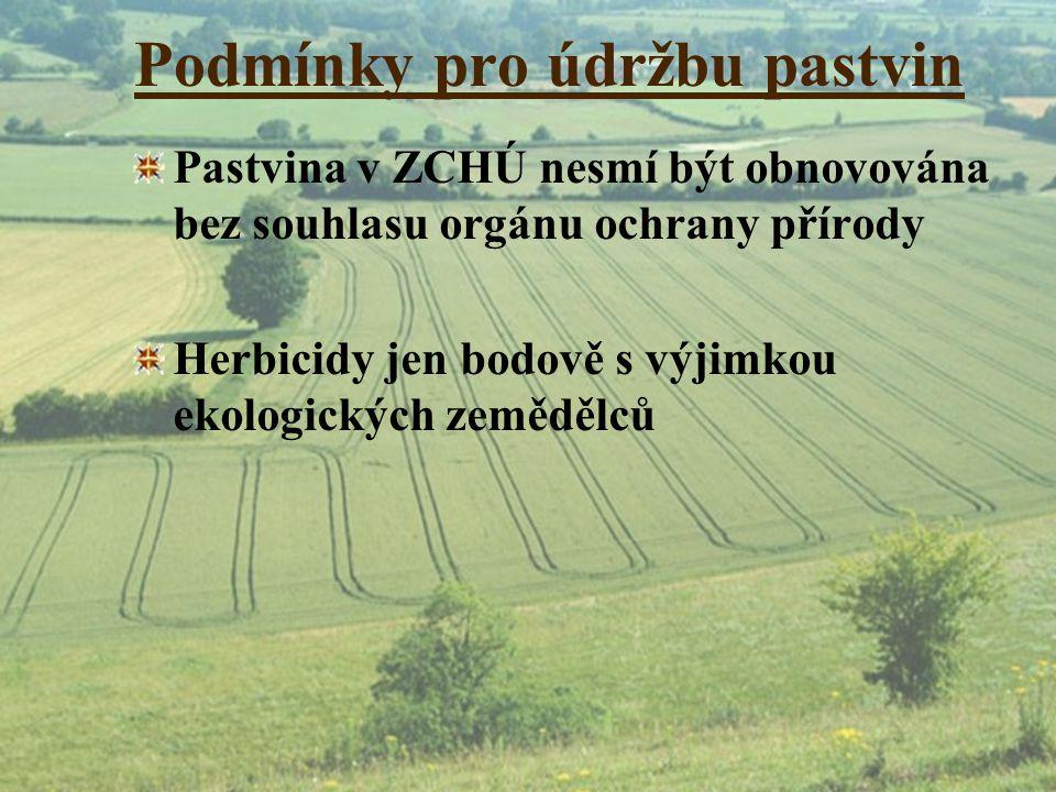 Podmínky pro údržbu pastvin Pastvina v ZCHÚ nesmí být obnovována bez souhlasu orgánu ochrany přírody Herbicidy jen bodově s výjimkou ekologických země