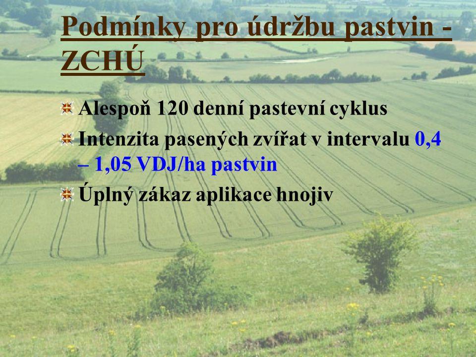 Podmínky pro údržbu pastvin - ZCHÚ Alespoň 120 denní pastevní cyklus Intenzita pasených zvířat v intervalu 0,4 – 1,05 VDJ/ha pastvin Úplný zákaz aplik