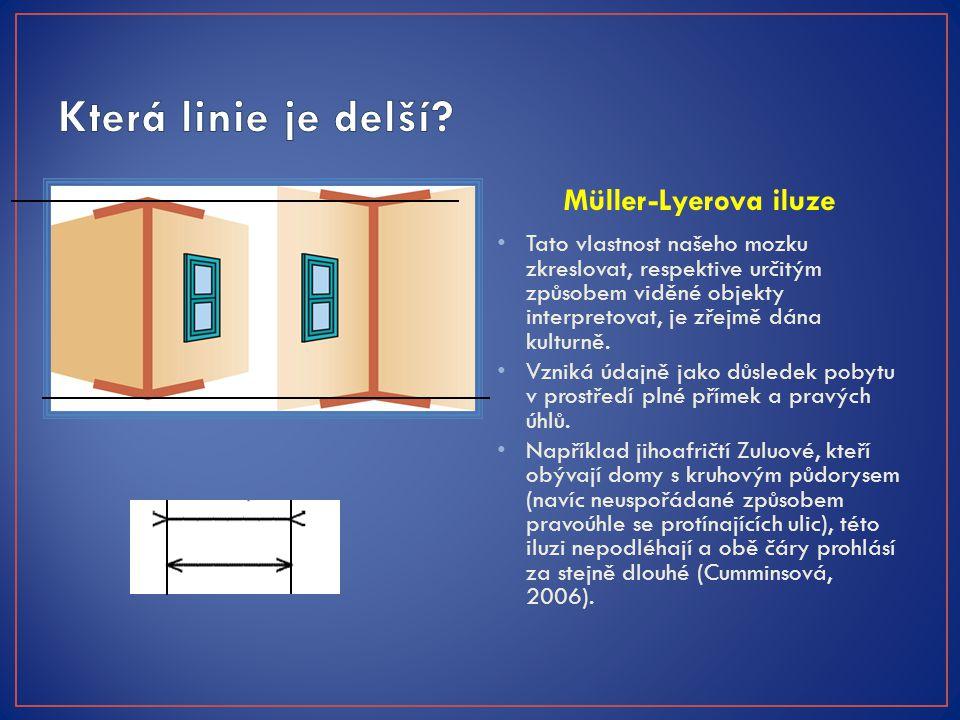Müller-Lyerova iluze Tato vlastnost našeho mozku zkreslovat, respektive určitým způsobem viděné objekty interpretovat, je zřejmě dána kulturně. Vzniká