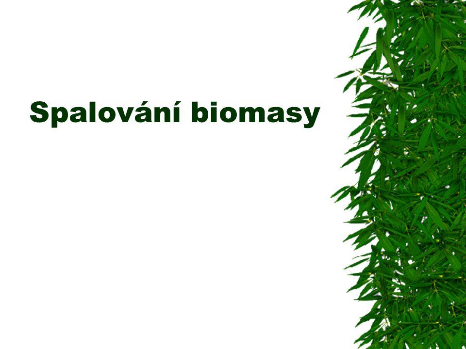 Spalování biomasy