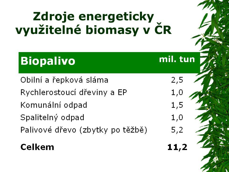 Zdroje energeticky využitelné biomasy v ČR