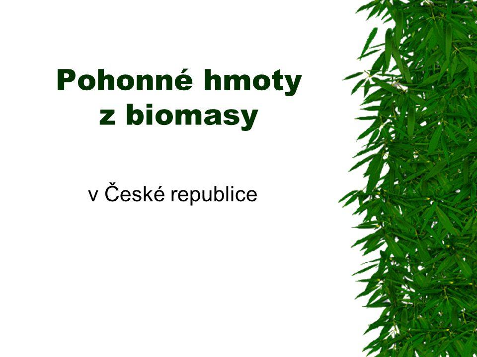 Pohonné hmoty z biomasy v České republice