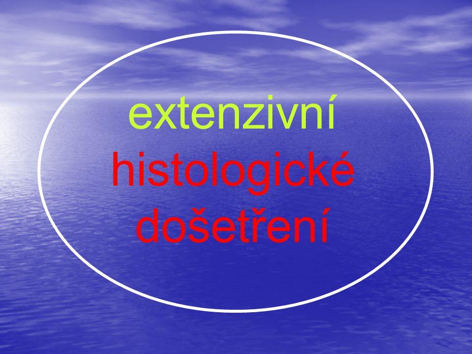 extenzivní histologické došetření