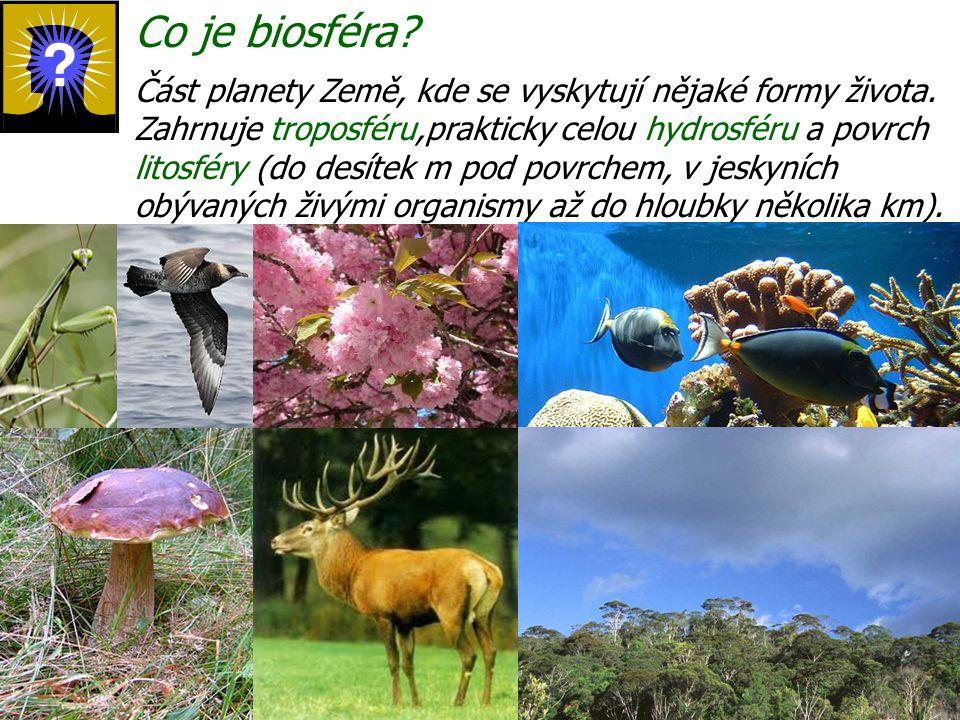 Co je biosféra? Část planety Země, kde se vyskytují nějaké formy života. Zahrnuje troposféru,prakticky celou hydrosféru a povrch litosféry (do desítek