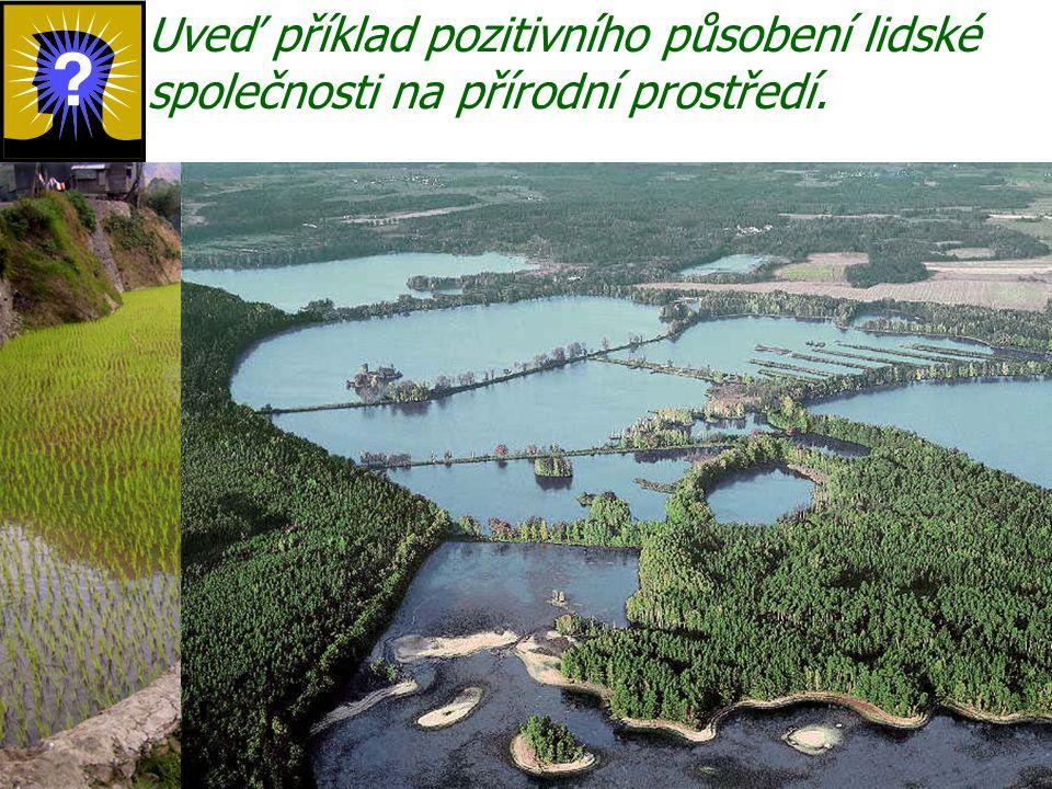 Uveď příklad pozitivního působení lidské společnosti na přírodní prostředí.