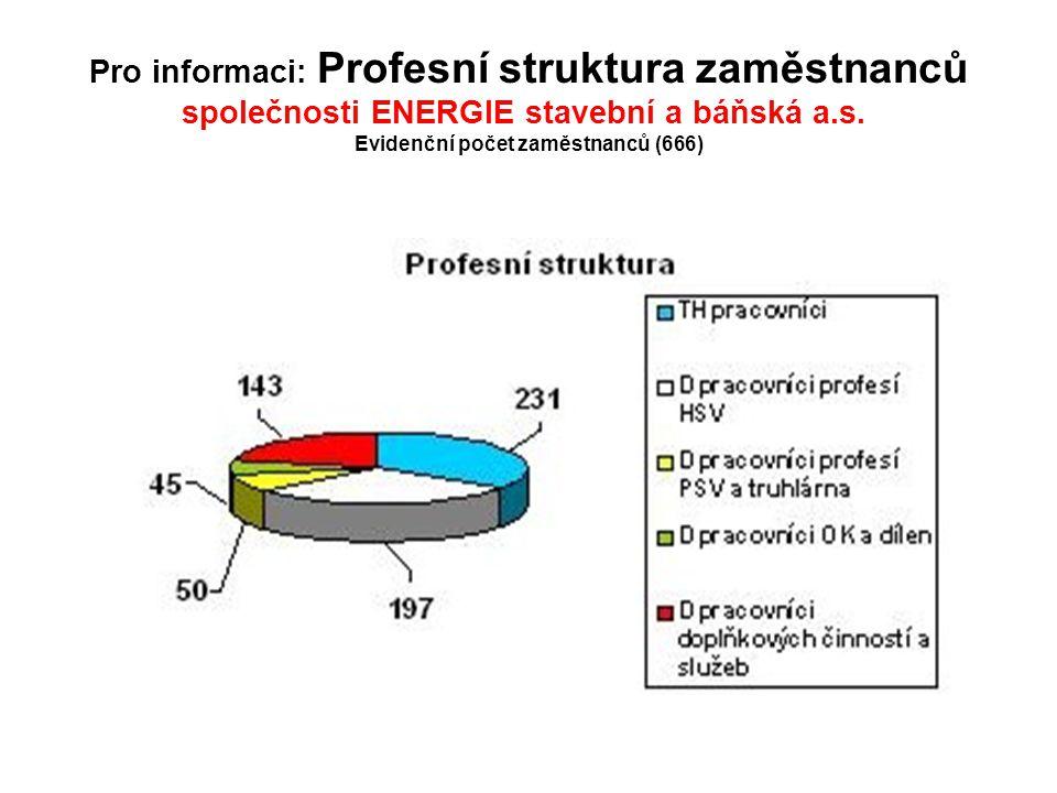 Pro informaci: Profesní struktura zaměstnanců společnosti ENERGIE stavební a báňská a.s.