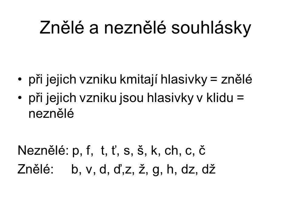 Znělé a neznělé souhlásky při jejich vzniku kmitají hlasivky = znělé při jejich vzniku jsou hlasivky v klidu = neznělé Neznělé: p, f, t, ť, s, š, k, c