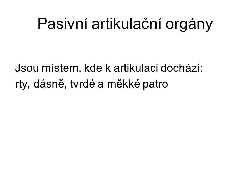 Pasivní artikulační orgány Jsou místem, kde k artikulaci dochází: rty, dásně, tvrdé a měkké patro