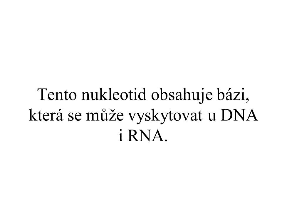 Tento nukleotid obsahuje bázi, která se může vyskytovat u DNA i RNA.