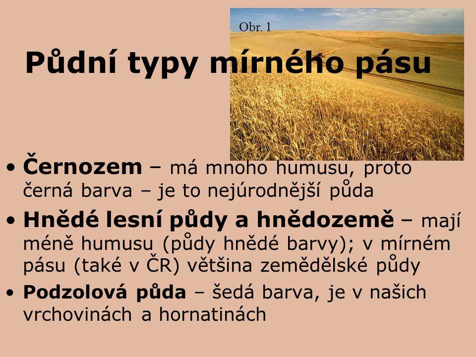 Půdní typy mírného pásu Černozem – má mnoho humusu, proto černá barva – je to nejúrodnější půda Hnědé lesní půdy a hnědozemě – mají méně humusu (půdy