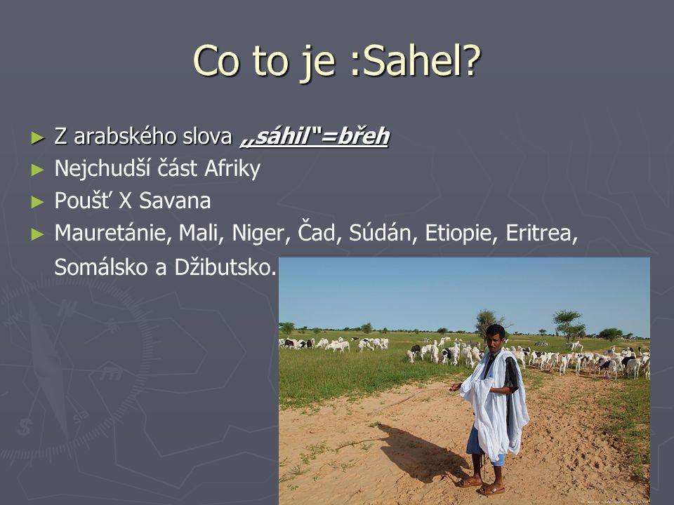"Co to je :Sahel? ► Z arabského slova,,sáhil""=břeh ► ► Nejchudší část Afriky ► ► Poušť X Savana ► ► Mauretánie, Mali, Niger, Čad, Súdán, Etiopie, Eritr"