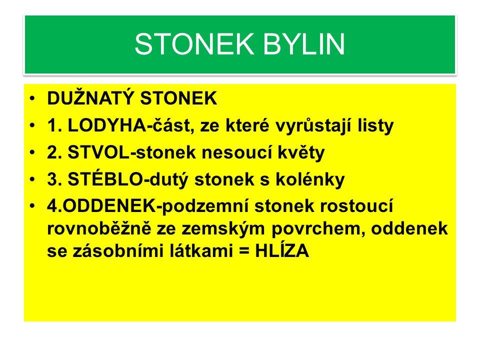 OTÁZKY K PROCVIČENÍ STONEK-ŘEŠENÍ 1.Jak se od sebe liší stonek bylin a stonek dřevin.