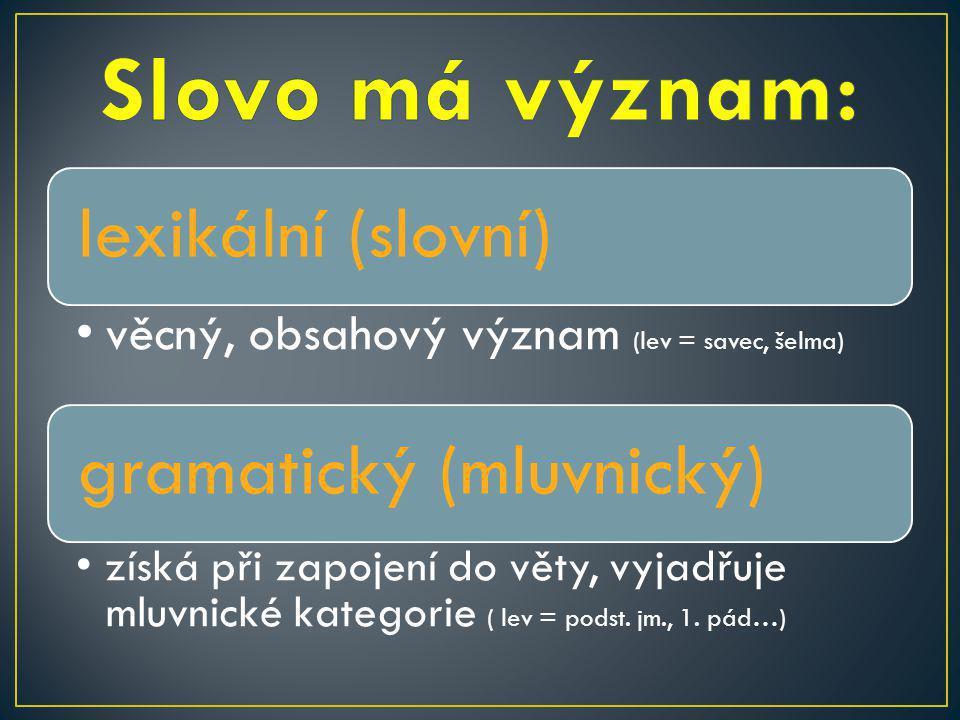 lexikální (slovní) věcný, obsahový význam (lev = savec, šelma) gramatický (mluvnický) získá při zapojení do věty, vyjadřuje mluvnické kategorie ( lev = podst.