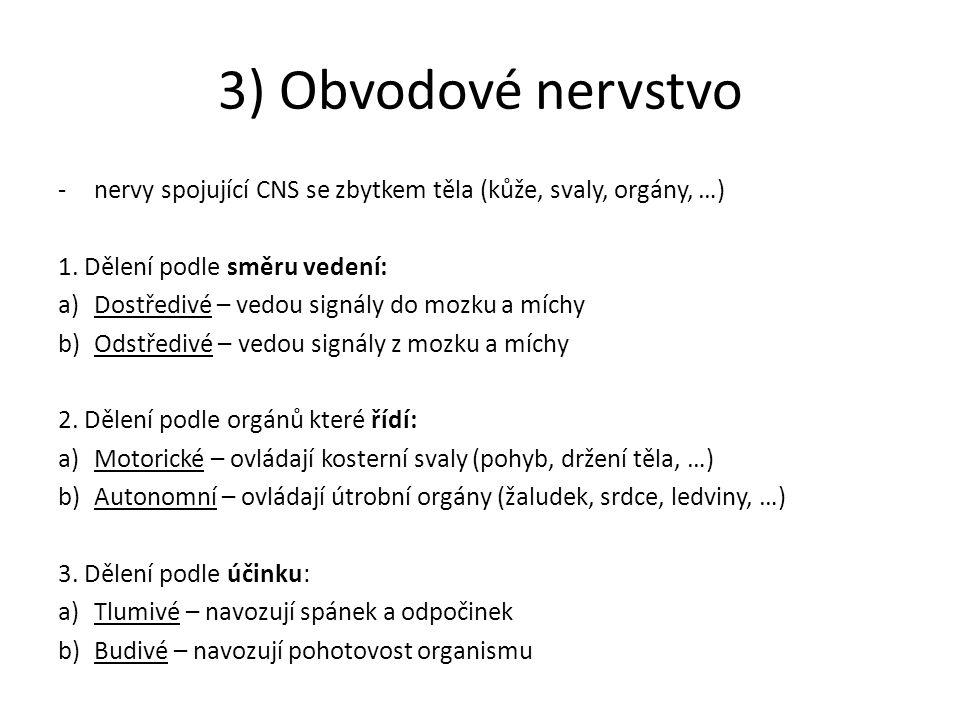 3) Obvodové nervstvo -nervy spojující CNS se zbytkem těla (kůže, svaly, orgány, …) 1. Dělení podle směru vedení: a)Dostředivé – vedou signály do mozku