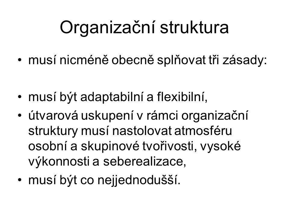 Organizační struktura musí nicméně obecně splňovat tři zásady: musí být adaptabilní a flexibilní, útvarová uskupení v rámci organizační struktury musí
