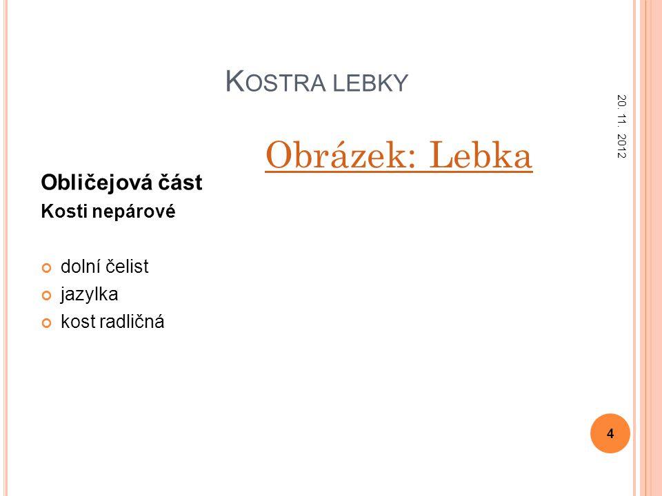 K OSTRA LEBKY Obličejová část Kosti nepárové dolní čelist jazylka kost radličná Obrázek: Lebka 20. 11. 2012 4