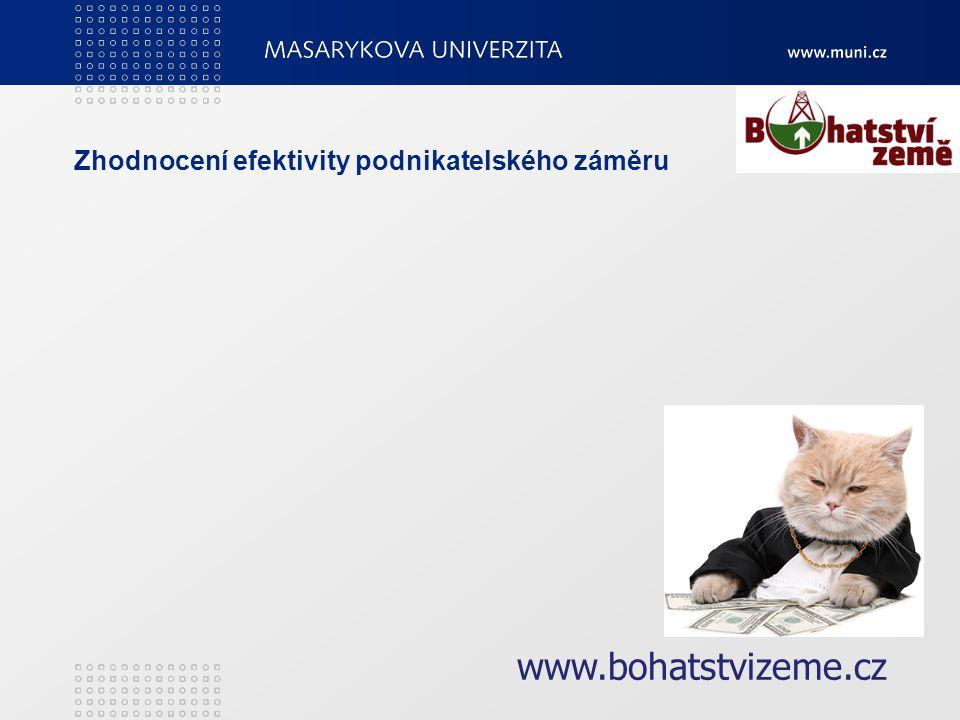 Zhodnocení efektivity podnikatelského záměru www.bohatstvizeme.cz