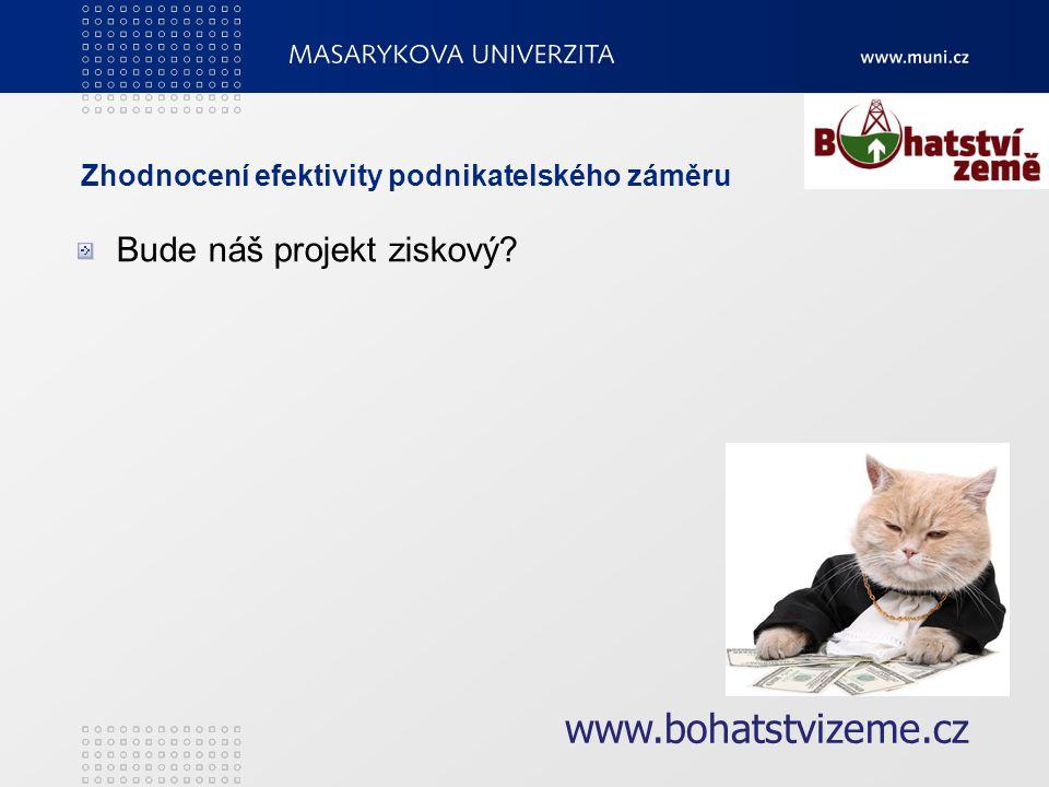 Zhodnocení efektivity podnikatelského záměru Bude náš projekt ziskový www.bohatstvizeme.cz