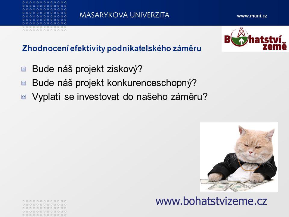 Zhodnocení efektivity podnikatelského záměru Bude náš projekt ziskový.