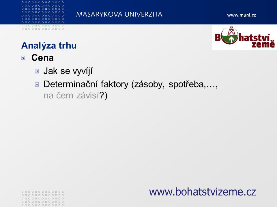 Zhodnocení efektivity podnikatelského záměru Bude náš projekt ziskový? www.bohatstvizeme.cz