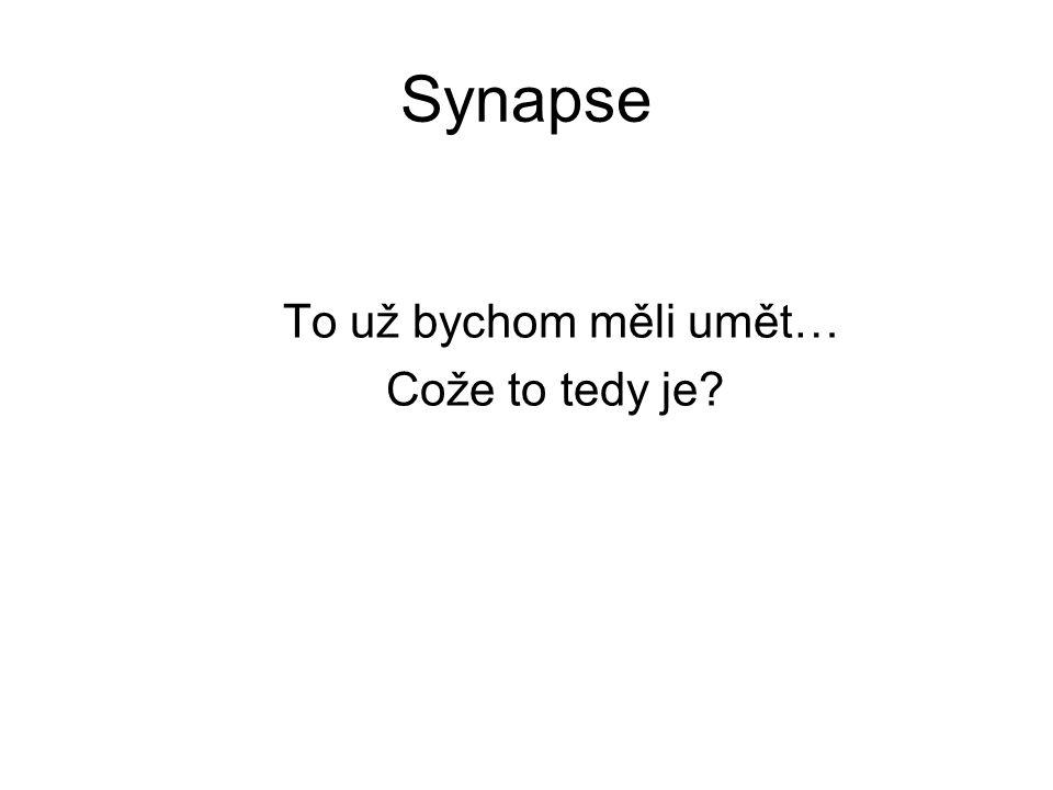 Synapse Synapse je místo, kde je signál jednoho neuronu předán druhému neuronu nebo svalu.