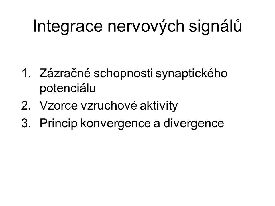 Integrace nervových signálů 1.Zázračné schopnosti synaptického potenciálu 2.Vzorce vzruchové aktivity 3.Princip konvergence a divergence