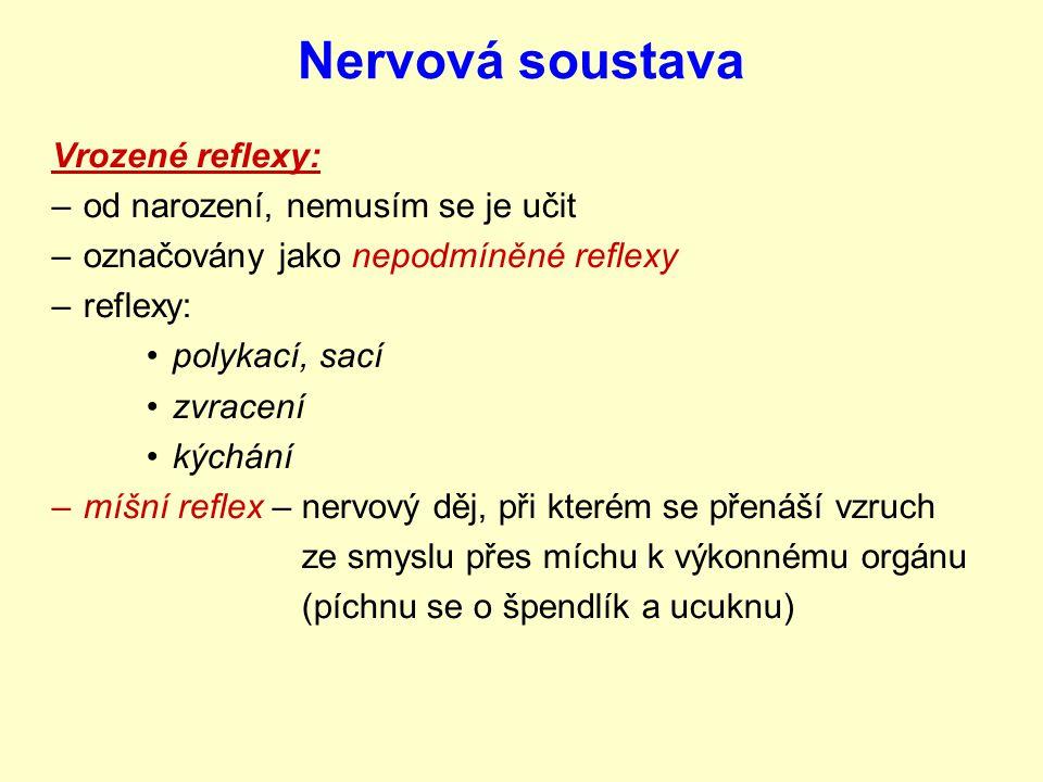 Nervová soustava Vrozené reflexy: –od narození, nemusím se je učit –označovány jako nepodmíněné reflexy –reflexy: polykací, sací zvracení kýchání –míšní reflex – nervový děj, při kterém se přenáší vzruch ze smyslu přes míchu k výkonnému orgánu (píchnu se o špendlík a ucuknu)