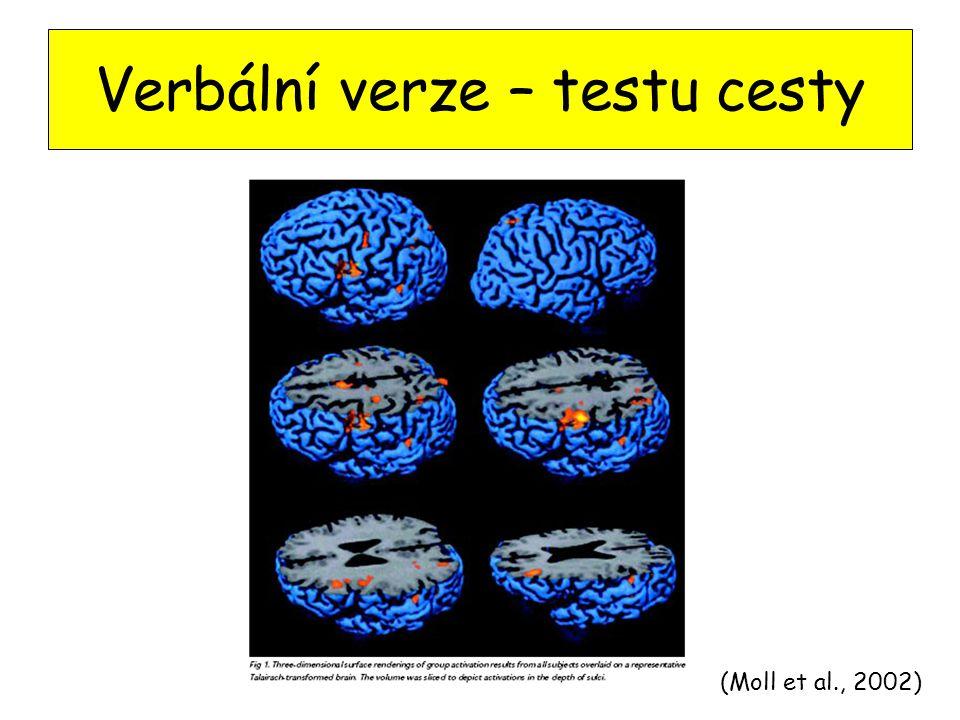 Verbální verze – testu cesty (Moll et al., 2002)
